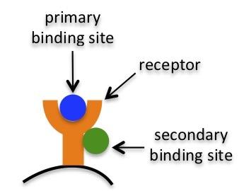 3 primary secondary